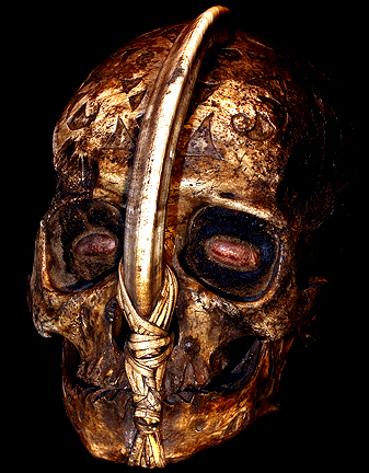 DAYAK CHILD'S HEADHUNTING SKULL